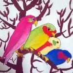 oiseaux3