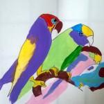 oiseaux6
