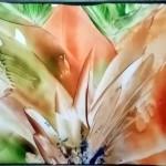 Fleur par Cathy